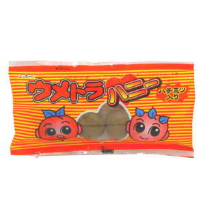 ウメトラハニー 40円×20